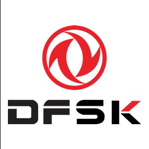 Dongfeng Sokon Logo