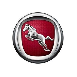 Hanteng Logo