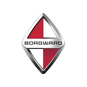 Borgward Group Logo